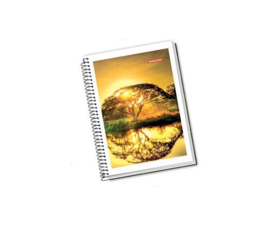 Caderno Espiral Capa Flexível 1/4 48fls Panamericana